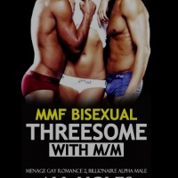 Book Review: Bisexual Threesome Erotic with MM Menage Gay Romance 2