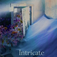 Coming Soon: Book Review - Intricate Deceptions